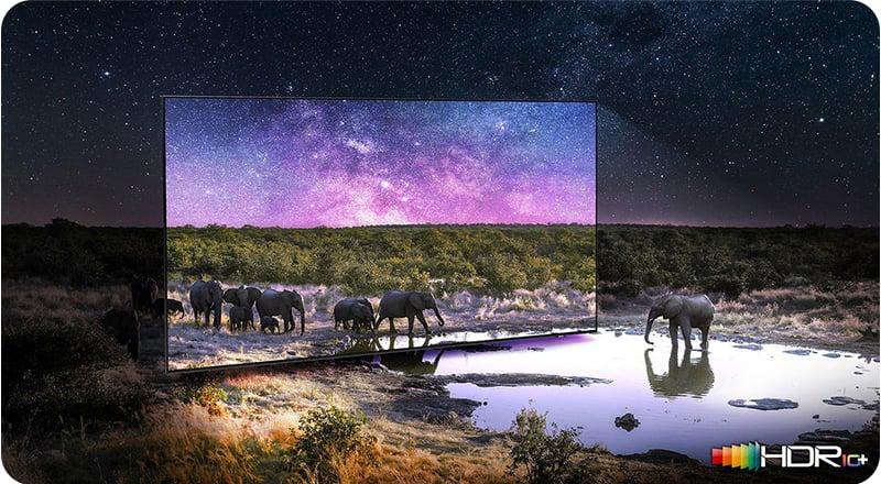 Samsung TV QA65QN90AAKXXT